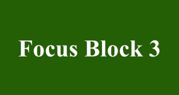 Focus Block 3